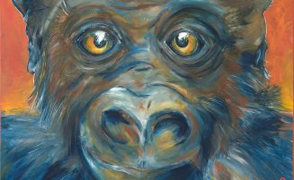 Gorilla   (813, Berger)