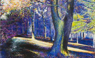 Wald, Impression   (606, Hermann)